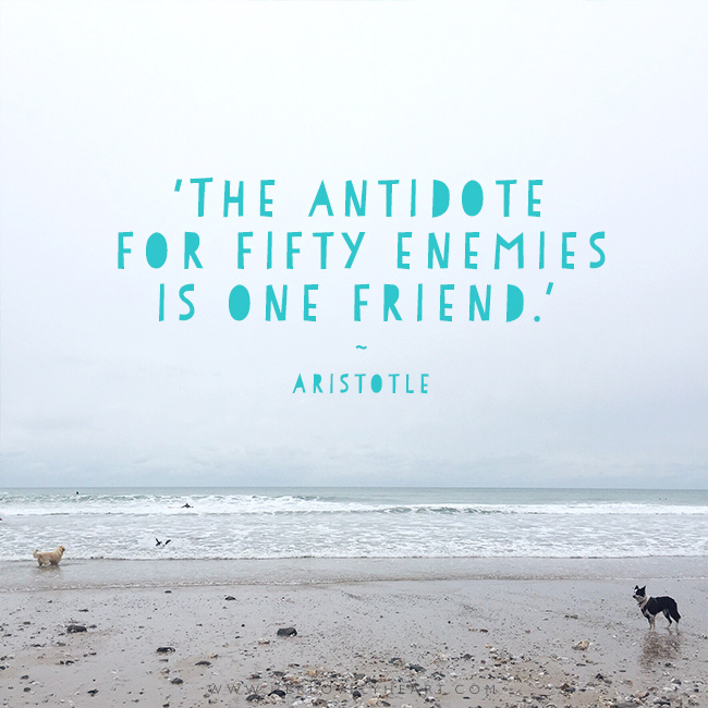 'The antidote for fifty enemies is one friend.' Find us on Instagram at #hlhinstaquotes